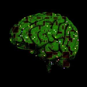 Calmus Brain